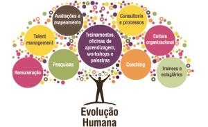 Serviços-da-Evolução-Humana-Consultoria